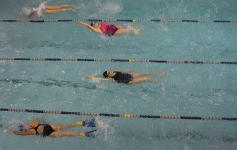 Poly Swim Makes a Splash