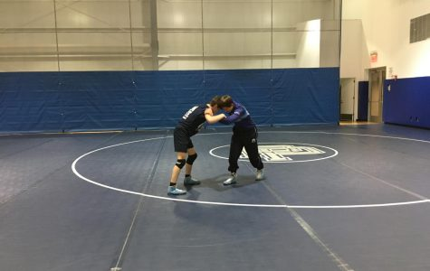 Wrestling Hits the Mats