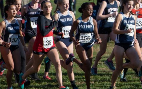 Girl's Cross Country: The Most Dangerous Sport in High School
